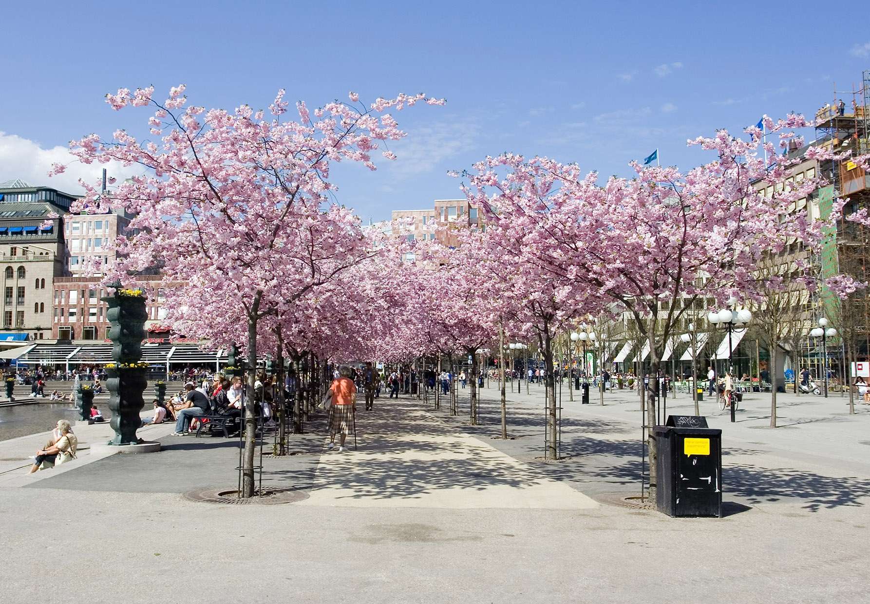 Spring_in_the_city_-_Stockholm,_Sweden_-_panoramio
